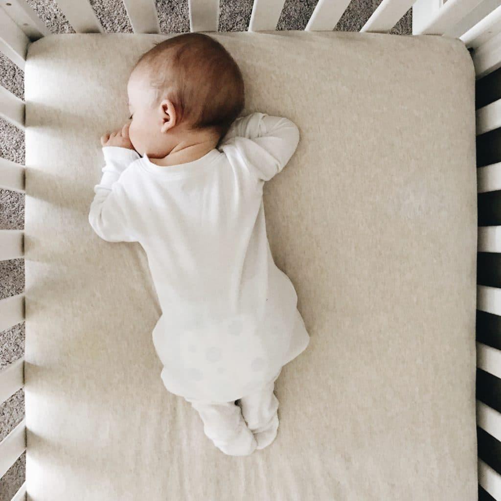 Nadó dormint bocaterrosa